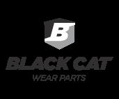 gris_blackcat